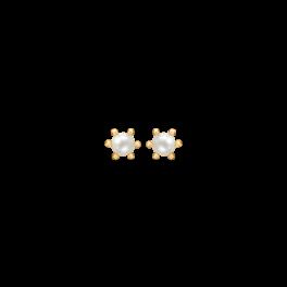 Guld ørestikker i 14 karat guld med 3 mm ferskvandsperle