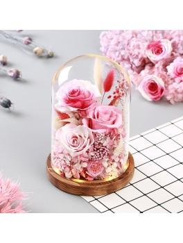 Tørrede blomster i glaskuppel med LED-Lys